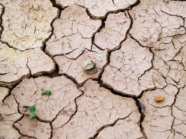 Ausgetrockneter Boden